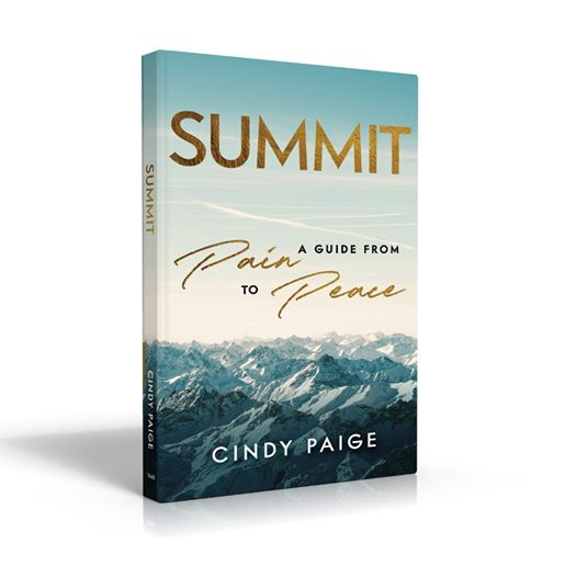 Book Cover The Summit