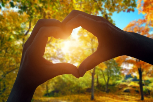 heart-shaped-hands