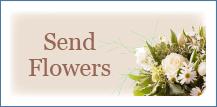 Send sympathy flowers