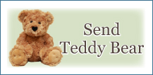 Send Teddy Bear